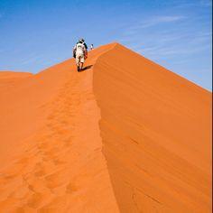Namibia - Dune Big Daddy
