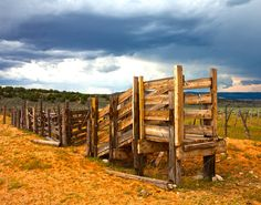 84 Best Cattle Equipment Images Cattle Beef Cattle Livestock