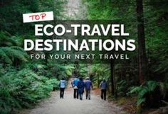 Here are some top latest tourism trends and their effect to business. Sustainable Tourism, Social Activities, Unusual Things, Travel And Leisure, Organic Recipes, Solo Travel, The Locals, Travel Destinations, Trends