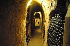 Les caves du château Ksara, Liban