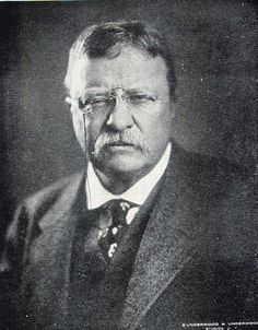 107 Best THEODORE ROOSEVELT 26th President images ...