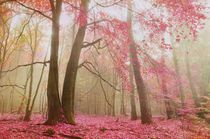 http://www.artflakes.com/de/v/canvas/products/atmospheric-autumn