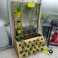 Jardin vertical sur terrasse, tomate salade fraise aromates à porté de main