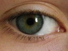 Light Summer eye 6