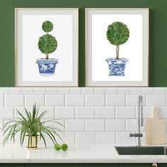 """Michelle Grayson on Instagram: """"Starting my Friday off with a bit of green. Topiary trees are always popular. . . . . . . . #sproutgallery #ilovethishome…"""" White Pot, Blue And White Vase, White Vases, White Prints, Large Prints, Chanel Art, Topiary Trees, Orchids, Watercolor"""