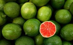 // blood lime