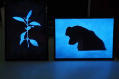 Glow in the dark paint image of a plant cutting and small dog in sky blue glow paint.