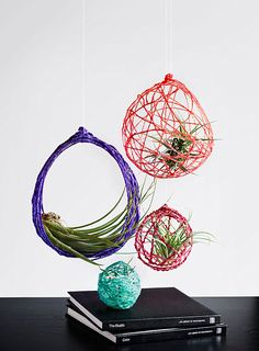 DIY woven air plant holder