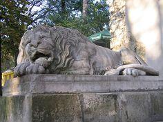 Lviv in ukrainian means that it is city of Lion