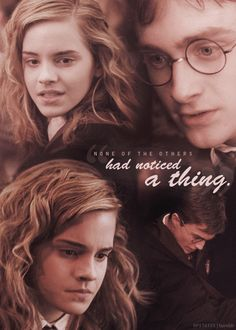 (100+) harry and hermione   Tumblr