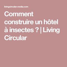 Comment construire un hôtel à insectes? | Living Circular