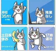 43件】現場猫