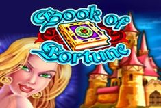 Book of Fortune (not to be confused with Book of Ra) is made by Amatic, an old-time player on the gambling market. Evil Wizard, High Castle, The Verdict, High Roller, Best Positions, Fantasy Story, Online Gambling, Play Online