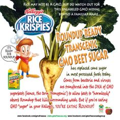 """Oh, SNAP! Rice Krispies made w/Roundup Ready GMO Sugar! Not your Grandmother's Rice Krispies. Are your children Roundup Ready? Glyphosate, """"active"""" ingredient in Roundup Recently found in mothers' breast milk & urine, so bioaccumulates in our bodies. Glyphosate patented by Monsanto 2010 as antibiotic. Sign petition to Kellogg's & let them know not buying it. BOYCOTT Kellogg's & buy Nature's Path Organic. Why give money to Kelloggs ever?! Even if no GMOs pesticides still there. Sign the…"""