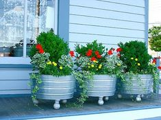 Galvanized Wash Tubs as planters by lynette
