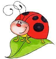 les insectes - la classe de Hello Cathy