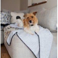 Muffet Travel Dog Blanket made by Poppy and Rufus Ltd in - Black Blanket, Dog Blanket, Fancy Dog Collars, Seat Cleaner, Dog Travel, Dog Names, Dog Accessories, Dog Design, Dog Bowls