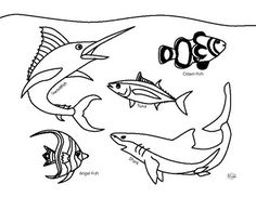 Ocean Fish Coloring Page Fish Coloring Page, Coloring Pages, Science Worksheets, Ocean, Quote Coloring Pages, Printable Coloring Pages, Sea, Kids Coloring, Colouring Sheets