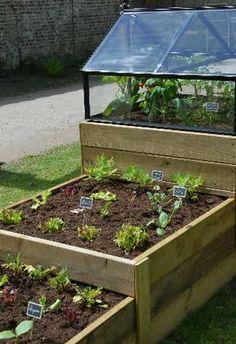 Garden Beds, Vegetable Garden, Garden Plants, Back Gardens, Outdoor Gardens, Wood Pallet Planters, Garden Living, Rooftop Garden, Garden Projects