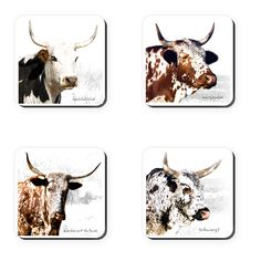 These coasters feature Ngunigalore's classic photographs of South Africa's indigenous nguni cattle. Set of Nursery Paintings, Animal Paintings, South African Homes, Cow Drawing, Rare Animals, Strange Animals, Cowboy Ranch, Cow Painting, Cow Art