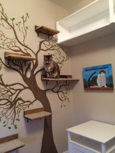 My Lusi enjoying her cat tree. Hand painted in my cat room.