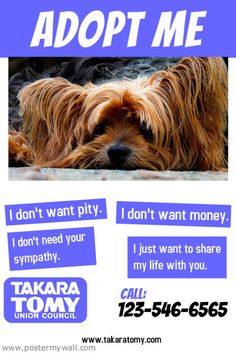 PosterMyWall   Search Results for Pet Adoption
