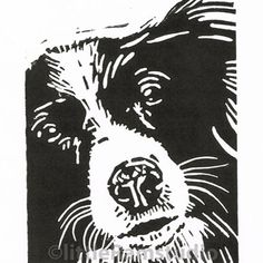 Collie Dog - Original Hand Pulled Linocut Print £15.00