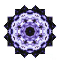Purple and White Butterfly Mandala by Tracey Lee Everington Butterfly Mandala, Purple Butterfly, Art Designs, Fine Art America, Christmas Gifts, Greeting Cards, Shops, Community, Wall Art