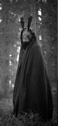 Rabbit mask by Nymla // Surrealism is my favorite cultural movement. This eerie, and creepy photo captures the confusion as to why a rabbit would wear a mask.