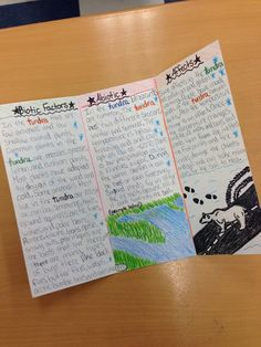 Amazing student work on an ecosystems brochure research project! grade 5 Science