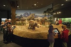 The Delaware Museum of Natural History:    Inside you can check out life-sized dinosaurs, an array of birds, an African watering hole, and look beneath the seas!      Outdoors you can take a walk through the Nature Trail and stop by the beautiful Butterfly Garden.