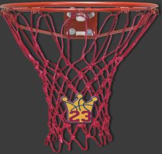 #23 Special Edition Basketball Net