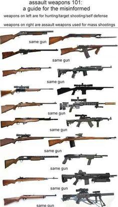 Assualt rifle, hunting rifle. Same gun.