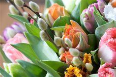 Enkla tips för att dina tulpaner ska blomma längre.