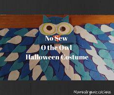 No Sew Halloween Costume - o sova (od Daniel Tiger)