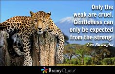 Only the weak are cruel. Gentleness can only be expected from the strong. - Leo Buscaglia - BrainyQuote