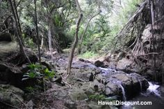 Hidden treasures on Oahu