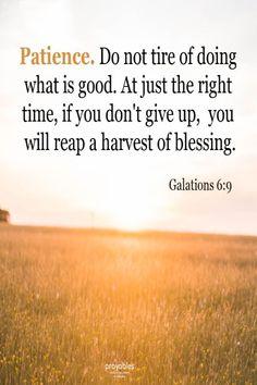 Bible: Galations 6:9
