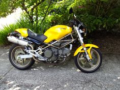 Mr. Personality - Ducati Monster 750.  This cutie actually belongs to my 93-year-old father-in-law.  He last rode it at age 85.  How cool is that!  I ride it now to keep alive the illusion that he could ride again.  Gotta love that enthusiasm.