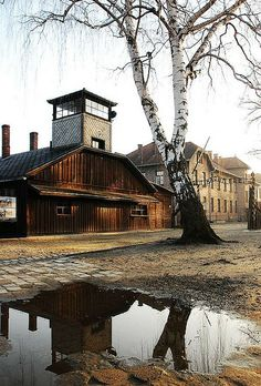 "Main entrance to the camp with the sign ""Arbeit macht frei"". The wooden building was the so-called Blockfuhrerstube - it housed some offices of the camp administration as well as one of the guard towers."