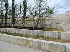 La nouvelle école, qui accueille 1000 élèves à été construite en 2011 dans le quartier Belval Ouest au Luxembourg. Les architectes paysagistes Hackl Hofman