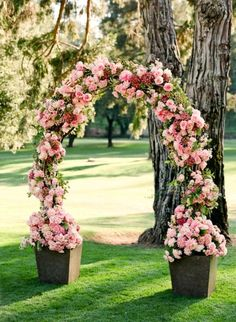 Pretty Rose arch to walk through entering the aisle.  Could be much higher/wider and in white.
