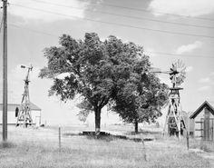 Robert Adams: Prairie - Thurman, Colorado, 1969, gelatin-silver print