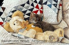 HK Fine Art & Prints by Lesley Harrison - Domestic Animal Pet Art Prints & Gifts Cat Drawing, Drawing Animals, Realistic Drawings, Pretty Cats, Dog Art, Quilt Patterns, Fine Art Prints, Pets, Illustration