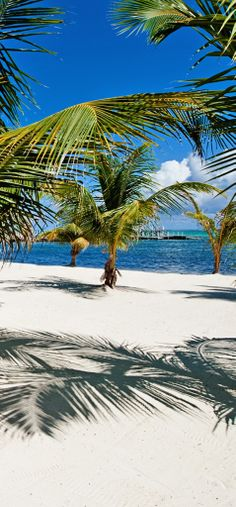 """Perfect spot to take in the blue - Caribbean"""" waters."""
