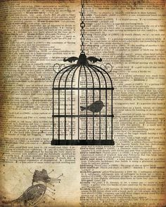 Bird Cage Graphic Art