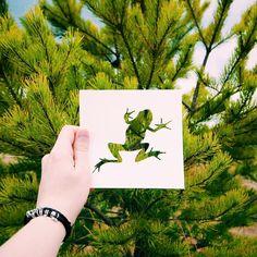 Nikolai Tolstyh • Paper Cut Animal Silhouettes • Frog