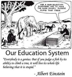 stratification in the education system.