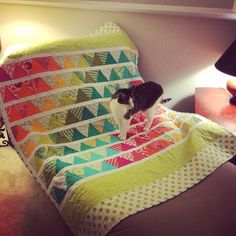 jujubepress:#kitty on a new #quilt #anpham
