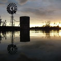 The Karoo is a very dry area, therefore the windpump/windmill is an iconic feature all over the region